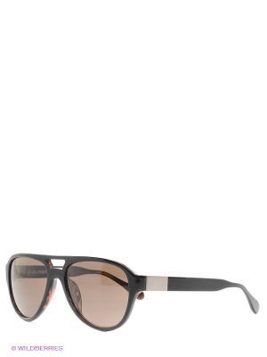 Солнцезащитные очки LM 528 02 La Martina. Цвет: коричневый