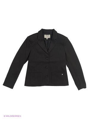 Пиджак Finn Flare. Цвет: темно-серый