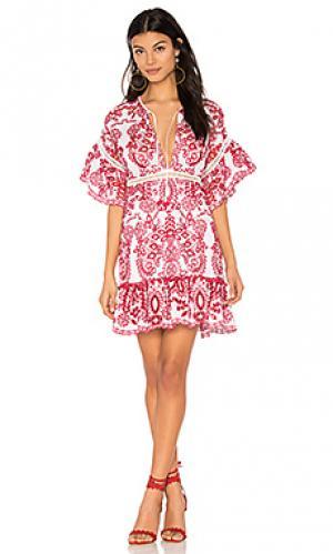 Платье daphne SAYLOR. Цвет: красный