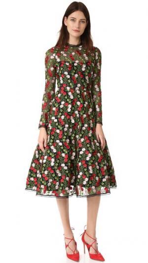 Платье Lou Alexis. Цвет: вышитые розовые цветы
