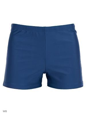 Плавки-шорты KICKERS. Цвет: синий
