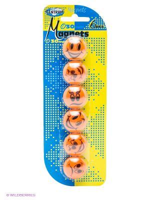 Набор магнитов 6 шт. Centrum. Цвет: оранжевый