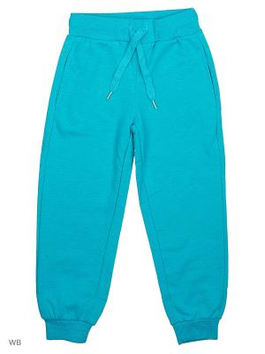 Трикотажные брюки Modis. Цвет: бирюзовый, светло-зеленый