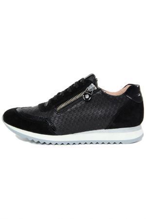 Sneakers GIANNI GREGORI. Цвет: black