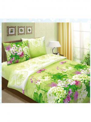 Постельное белье Семейный Seta. Цвет: зеленый