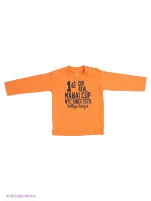 Лонгслив MANAI. Цвет: оранжевый