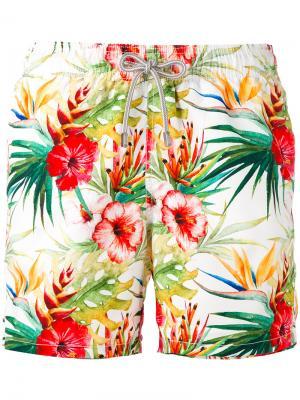 Плавательные шорты с принтом Gustavia Mc2 Saint Barth. Цвет: многоцветный