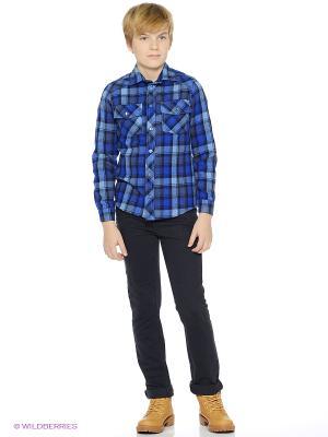 Рубашка Милашка Сьюзи. Цвет: синий
