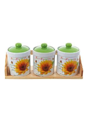 Набор банок для сыпучих продуктов Подсолнух, Polystar. Цвет: светло-зеленый