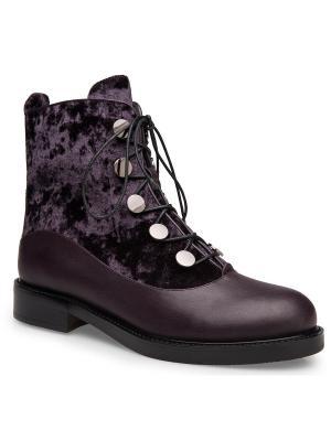 Ботинки Ekonika. Цвет: фиолетовый