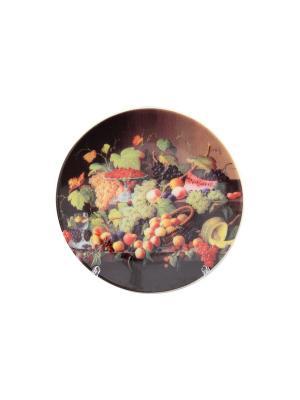 Тарелка декоративная Натюрморт с фруктами Elan Gallery. Цвет: желтый, зеленый, коричневый