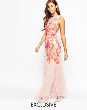 True Violet Шифоновое платье макси с принтом Rose. Цвет: мульти