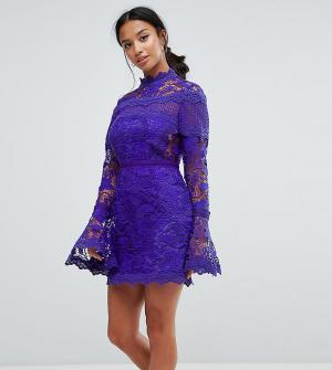 ASOS Petite Кружевное платье мини с длинными рукавами клеш. Цвет: темно-синий