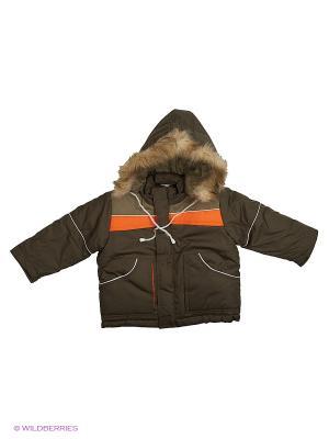 Куртка Babycollection. Цвет: хаки, оранжевый