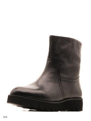 Ботинки Sasha Fabiani.. Цвет: черный