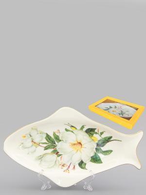 Селедочница Белый шиповник Elan Gallery. Цвет: белый, зеленый