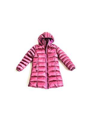 Пальто Iota. Цвет: фуксия