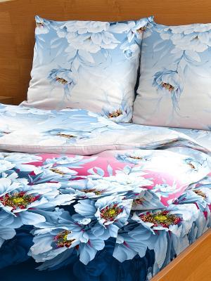 Комплект постельного белья Letto B70-4, бязь, 2,0-сп. Цвет: синий