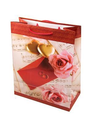 Комплект пакетов из 12шт. 26*32см Русские подарки. Цвет: красный