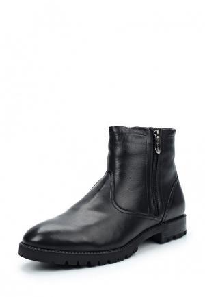 Ботинки классические Valley. Цвет: черный