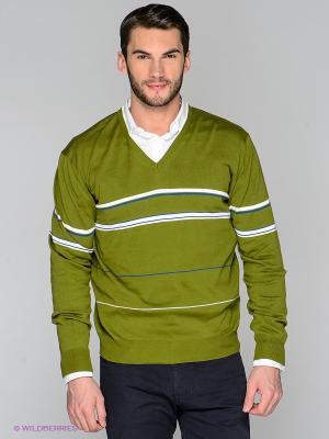 Пуловер RETIEF. Цвет: зеленый, белый, синий
