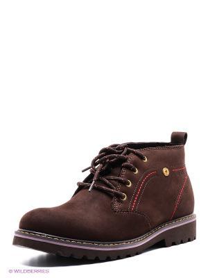 Ботинки Nexpero. Цвет: темно-коричневый