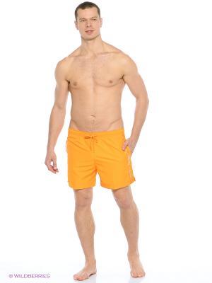 Шорты плавательные Calvin Klein. Цвет: оранжевый