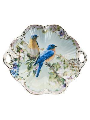 Конфетница Эдем в п/у Elff Ceramics. Цвет: белый, синий, зеленый, желтый