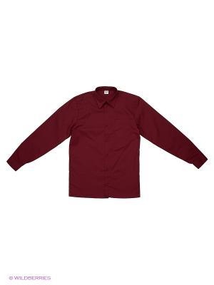 Рубашка Аэлита. Цвет: бордовый