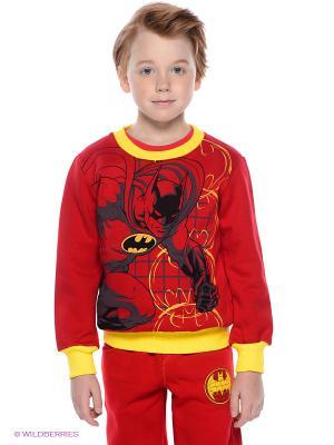 Свитшот Batman. Цвет: красный, желтый