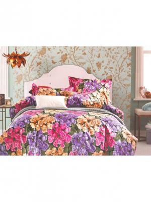 Комплект постельного белья ROMEO AND JULIET. Цвет: рыжий, розовый, фиолетовый, фуксия