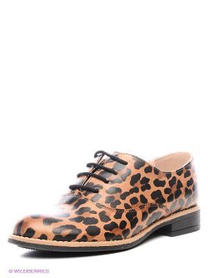 Туфли BELWEST. Цвет: темно-коричневый