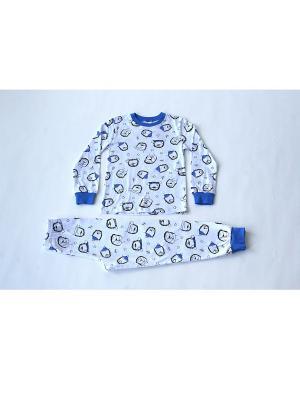 Пижама Iota. Цвет: синий