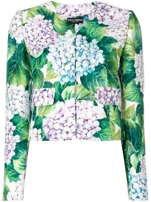 Укороченный жакет с гортензиями Dolce & Gabbana. Цвет: многоцветный