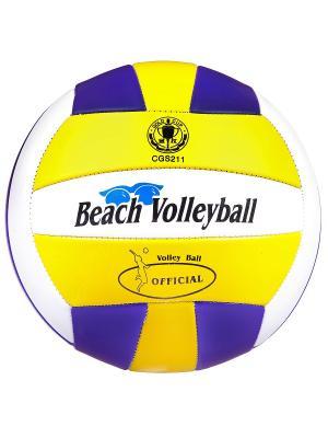 Мяч волейбольный ,280г, PVC,matt,2слоя, Volleyball. BONNA. Цвет: темно-фиолетовый,желтый,белый
