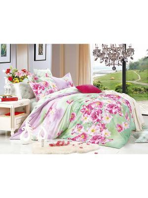 Комплект постельного белья ЕВРО сатин, рисунок 687 LA NOCHE DEL AMOR. Цвет: салатовый