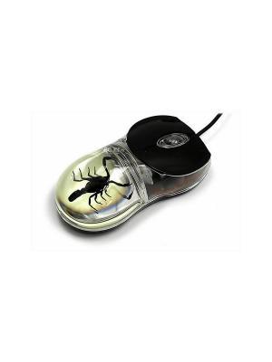 В Мире Насекомых Черный Скорпион Мышка Склад Уникальных Товаров. Цвет: прозрачный