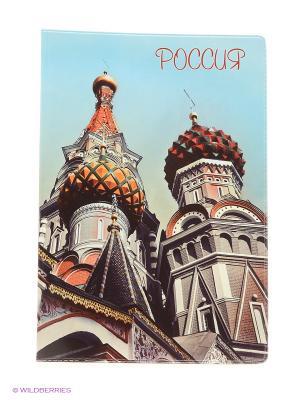 Обложка для паспорта Россия Купола А М Дизайн. Цвет: голубой, коричневый