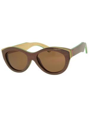 Очки TM0027-B-6-SK SKATEBOARD TEHMODA. Цвет: коричневый