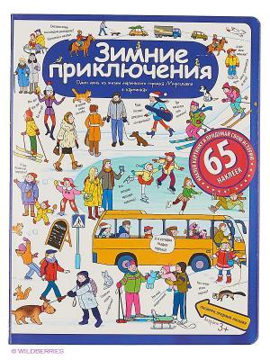 Рассказы по картинкам с наклейками. Зимние приключения АЙРИС-пресс. Цвет: белый, синий