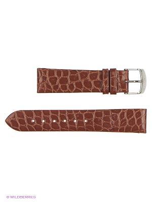 Ремень для часов, им.крокодила, лаковый J.A. Willson. Цвет: коричневый