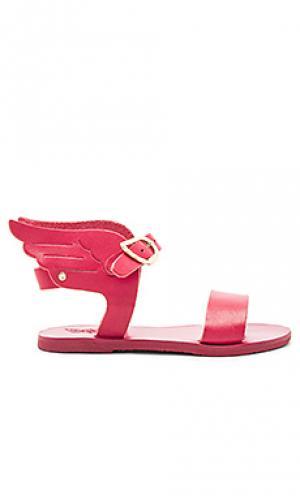 Сандалии little ikaria Ancient Greek Sandals. Цвет: розовый