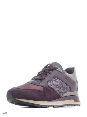 Сникеры GEOX. Цвет: фиолетовый, сливовый
