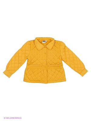Куртка JERRY JOY. Цвет: желтый