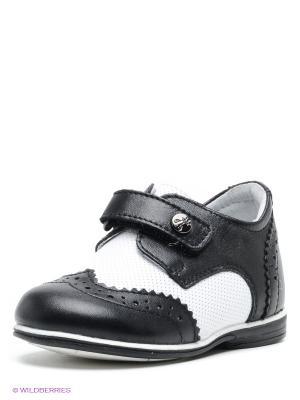 Ботинки ELEGAMI. Цвет: черный, белый