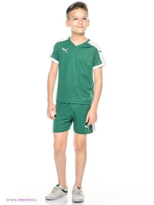 Шорты Pitch Shorts WithInnerbrief Puma. Цвет: зеленый