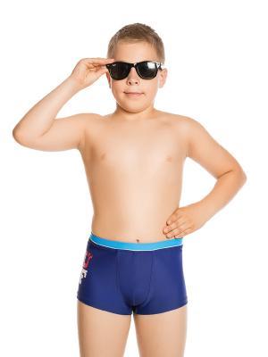 Плавки-шорты для мальчиков Nirey. Цвет: синий