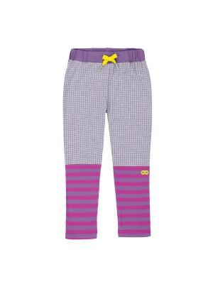 Леггинсы для девочки Deux par. Цвет: сиреневый, фиолетовый