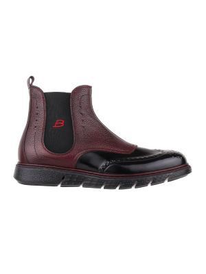 Ботинки BARRACUDA. Цвет: черный, бордовый