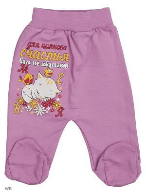Ползунки для новорожденных Bonito kids. Цвет: сиреневый